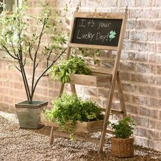 Wooden Chalkboard Planter