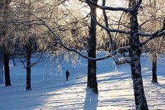 Ph Olavi Autio, Vihiojanpuisto Tampere