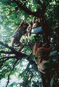I was the oldest of 6 children and we loved playing in the trees just like these kids!!! Memories..