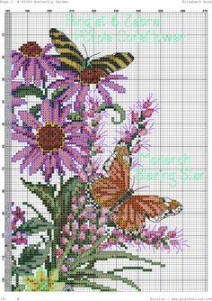 butterfly garden-6