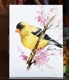 Items similar to Original Watercolor Greeting Card, Colorful Goldfinch Bird, Handmade Mothers day Greeting Card inch on Etsy - Original watercolor greeting card on acid free watercolor paper. Handpainted, NOT a print. The card - Watercolor Bird, Watercolor Animals, Watercolor Paintings For Beginners, Mother's Day Greeting Cards, Bird Artwork, Color Pencil Art, Bird Drawings, Invite, Painting Art