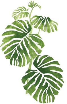 monstera leaf stencil - Google Search
