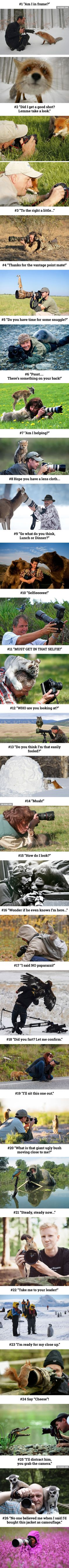 20+ Reasons Why Being A Nature Photographer Is The Best Job In The World - 9GAG