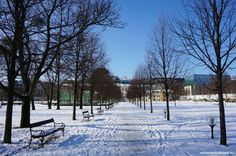 For those who can brave the cold and like the idea of walking through a snowy wonderland, we recommend to check these tips how to enjoy winter in Bratislava Bratislava, Czech Republic, Hungary, Austria, Poland, Brave, Cities, Wonderland, Walking