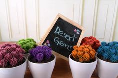 Desert Gems are some of the most boldly colorful cactus around. They're perfect for adding a splash of personality to your decor!