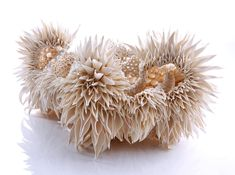 <p>Irish artistNuala O'Donovansculpts intricate hand-built porcelain forms that resemble fractal patterns found in nature. Borrowing from shapes found in coral, teasel flowers, and pinecones, O'Donovan examines not only patterns, but irregularities that arise from random or unexpected events. From her artist statement: The result of using the characteristics of fractal …</p>
