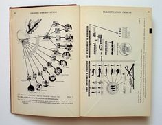 Willard Cope Brinton's Graphic Presentation (1939)