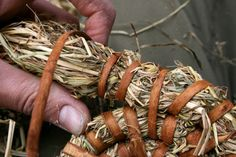 Making a basic coiled basket Big Basket, Rope Basket, Basket Weaving, Weaving Projects, Weaving Art, Diy And Crafts, Arts And Crafts, Willow Weaving, Pine Needle Baskets