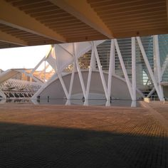 Anochece en el Museo de las Ciencias Príncipe Felipe. Hoy estaremos de visita en Valencia #igersvalencia #visitvalencia