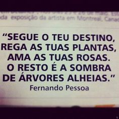 Segue o teu destino Word 3, Special Words, Pencil And Paper, Message In A Bottle, More Than Words, My Mood, Quotations, Tattoo Quotes, Funny Quotes