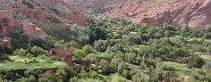 Atlas Mountain hike: the Rose Valley and the Dades Valley | Morocco Tour Service