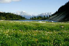 The rainbow lake Squamish-Lillooet, British Columbia, Canada – taken by Steffen Sauder