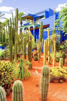 YSL's Jardin Majorelle in Marrakech. Visit Marrakech, Marrakech Morocco, Marrakech Gardens, Kew Gardens, Landscape Design, Garden Design, Plant Design, Dry Garden, Morocco Travel