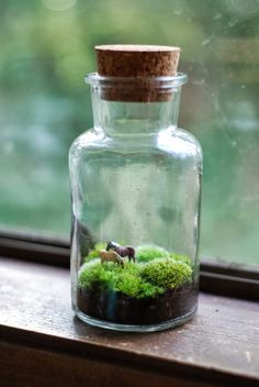 Two tiny horses grazing on hillocks of moss in a lovely vintage jar with cork stopper, about 8 inches tall. Jar will vary slightly as I use vintage jars. Cute Crafts, Diy Crafts, Tiny Horses, Moss Terrarium, Bottle Terrarium, Deco Nature, Vintage Jars, Bottle Charms, Horse Crafts