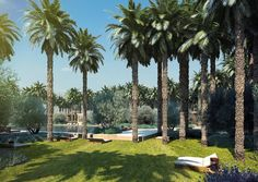 🌴Welcome to the NEW enchanting oasis gardens offering a new large swimming pool, 7 private pavillons and a new outdoor dining experience!🌴 #royalmansour #Marrakech #new #garden #gardens #travel #palmtrees #pool #jardin #new #travel