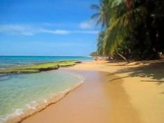 Fantastic guide to Puerto Viejo via This American Girl
