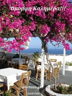 Beautiful Greece ~ pink Bougainvillea Blossoms, the blue Mediterranean Sea, Alfresco Dining, Bougainvillea, Oh The Places You'll Go, Places To Travel, Wonderful Places, Beautiful Places, Beautiful Life, Beautiful Flowers, Travel Around The World, Around The Worlds