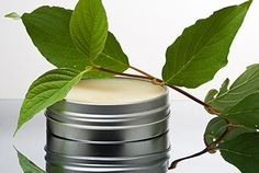 Homemade drawing salve, which removes splinters and treats common conditions such as boils.