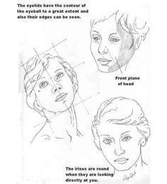 Basic Anatomy for the Artist - Lesson 2  & a comprehensive drawing tutorial collection