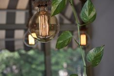Design da esterno: come arredare il giardino | Travel Blogger Tiffany Miller