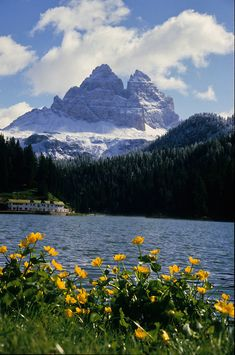 ITALY Alps, Dolomites, Lake Misurina