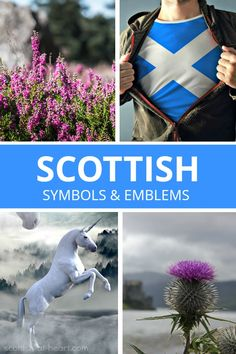 Scottish symbols and emblems are overflowing with history, mystery, superstition and pageantry. Get a glimpse of this fascinating world here and be prepare to be intrigued! Scotland Culture, Scotland Map, Scottish Culture, England And Scotland, Scotland Travel, Scotland Vacation, Scottish Symbols, Scottish Music, Celtic Symbols