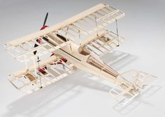 I guess the ribs, template sections, bulkheads,+ spars could be considered people, so that a model plane might be a metaphor for organizing to have a family.  MH
