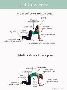 Strength Yoga With Yoyi Cuban Gurú @ 10:00 am