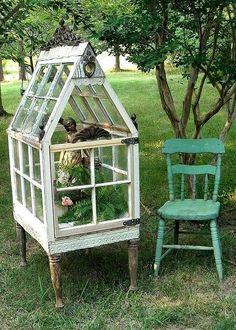 old windows make a sweet miniature greenhouse