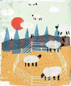 Sheeps illustration
