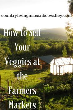 Everything you NEED to know about selling produce at the Farmers Market! Make money from your homestead.