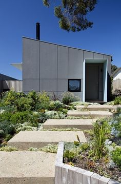 Large concrete stepping stones and sweeping planting at Sorrento Beach House Clare Cousins Architects Sorrento Beach, Hawthorne House, Small Beach Houses, Concrete Steps, Exterior Cladding, House Landscape, Exterior House Colors, Tiny House Design, Clare Cousins