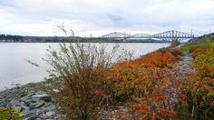 Concours de photo Par tous les temps 2013 | Both Quebec city bridges by fall colored day