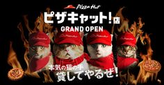 https://pizzacat.pzh.jp/?fb_action_ids=10152328553773786&fb_action_types=og.likes