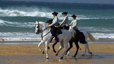 El ballet de los caballos de Jerez