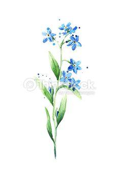 florzinha azul