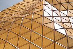 Nuovo materiale wood-skin