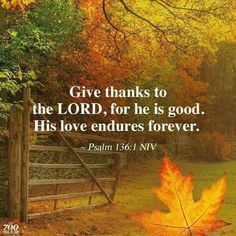 Psalm 136, Psalms, Thanksgiving Bible Verses, Thanksgiving Ideas, Meaningful Quotes About Life, He Is Lord, Shadow Of The Almighty, Great Love Stories, God Prayer