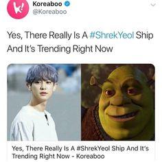 Exo Memes Funny, Hilarious, Park Chanyeol, Baekhyun, Nct, Asia, Drama, Internet, Posts