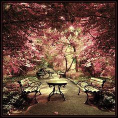 Botanical Garden, Wroclaw, Poland