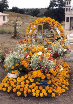 Decorated Grave Tlaxcala Mexico. for the day of the dead, prolly. Orange marigolds are death's flower