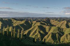The landscape along the Forgotten World Highway NZ [OC] [5711x3808]