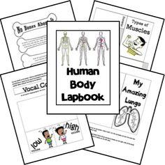 FREE Human Body Unit - lapbook