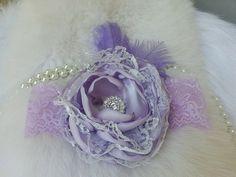 Hey, I found this really awesome Etsy listing at https://www.etsy.com/listing/188653686/lavenderfascinatorgirlheadbandheadband