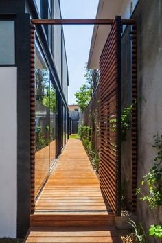 House 7x37,© Rafaela Netto #Casasminimalistas