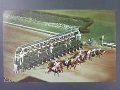 Hialeah Florida FL Race Track Starting Gate Horse Racing Vintage Postcard 1960s