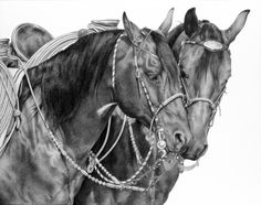 """""""Horse Whispers"""" Pencil on Board"""