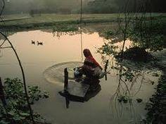 bangladeshi river - Google Search