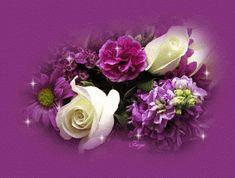 GIFS HERMOSOS: bonitas flores encotradas en la webn