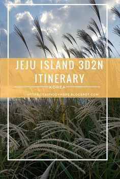 All you need to know for a 3D2N visit to Jeju Island, Korea. Part 1